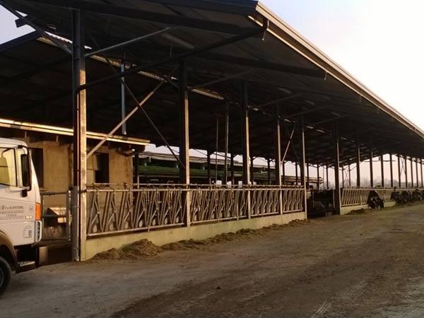 Costruzioni-metalliche-Reggio-emilia